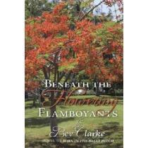 portada beneath the flowering flamboyants