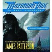 the angel experiment - james patterson - little brown & co