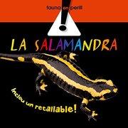 (cat).salamandra, la.(llibres de coneixements) - varios autores - combel