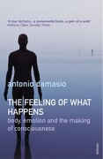 Feeling of What Happens - Damasio, Antonio (Van Allen Distinguishe - Vintage/Ebury (a Division of Random
