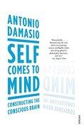 Self Comes to Mind: Constructing the Conscious Brain - Damasio, Antonio R. - Vintage Books