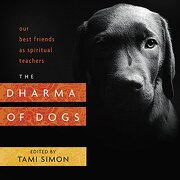 The Dharma of Dogs: Our Best Friends as Spiritual Teachers
