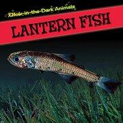 Lantern Fish (Glow-in-the-dark Animals)