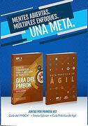 Guaa de los Fundamentos Para la Direccian de Proyectos (Guaa del Pmbok) y Guaa Practica de Agil (Spanish Edition of a Guide to the Project Management.   (Pmbok Guide) & Agile Practice Guide Bundle) - Project Management Institute - Project Management Institute