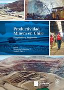 Productividad Minera En Chile. Diagnostico Y Propuestas
