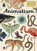 Animalium - Jenny Broom - Impedimenta