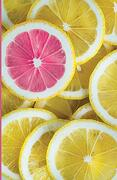 Journal Notebook: College Ruled Stationery Writing Paper (5. 5 x 8. 5 Inches), Travel Sized Lined Journal, Diary, Recipe Notepad, Cover Featuring a Pink Lemon Slice (Fruit Photography) (Volume 6) (libro en inglés)
