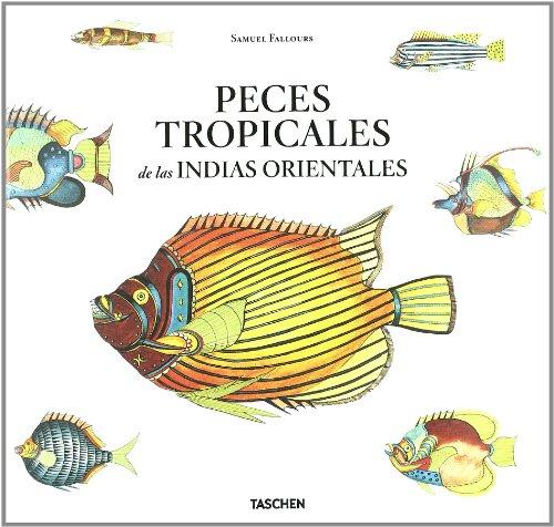 Peces tropicales indias