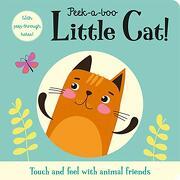 Peek-A-Boo Little Cat! (Peep-Through Window Books) (libro en inglés)