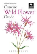 Concise Wild Flower Guide (The Wildlife Trusts) (libro en Inglés)