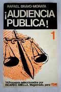 ¡Audiencia pública!, tomo I