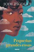 PEQUEÑAS GRANDES COSAS - PICOULT, JODI - EDICIONES URANO S.A.
