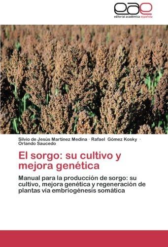 El sorgo: su cultivo y mejora genetica martinez medina silvio de jesus